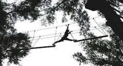 Parcours accrobranche à Millau