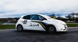 Pilotage Rallye en Peugeot 206 et 208 - Circuit d'Andrézieux