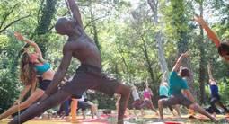 Cours de Yoga zen près de Gardanne