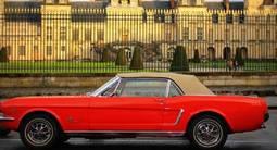 Pilotage sur Route d'une Mustang coupé de 1965 près de Bonifacio