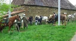 Randonnée d'une journée à cheval près de Limoges