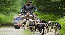 Cani-rando ou Cani-kart à Névache dans la vallée de la Clarée