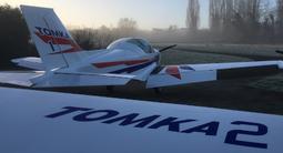 Vol en patrouille d'avion - Baptême de l'air dans le ciel de Versailles