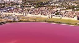 Croisière en Bateau sur le Rhône à Sète en petite Camargue